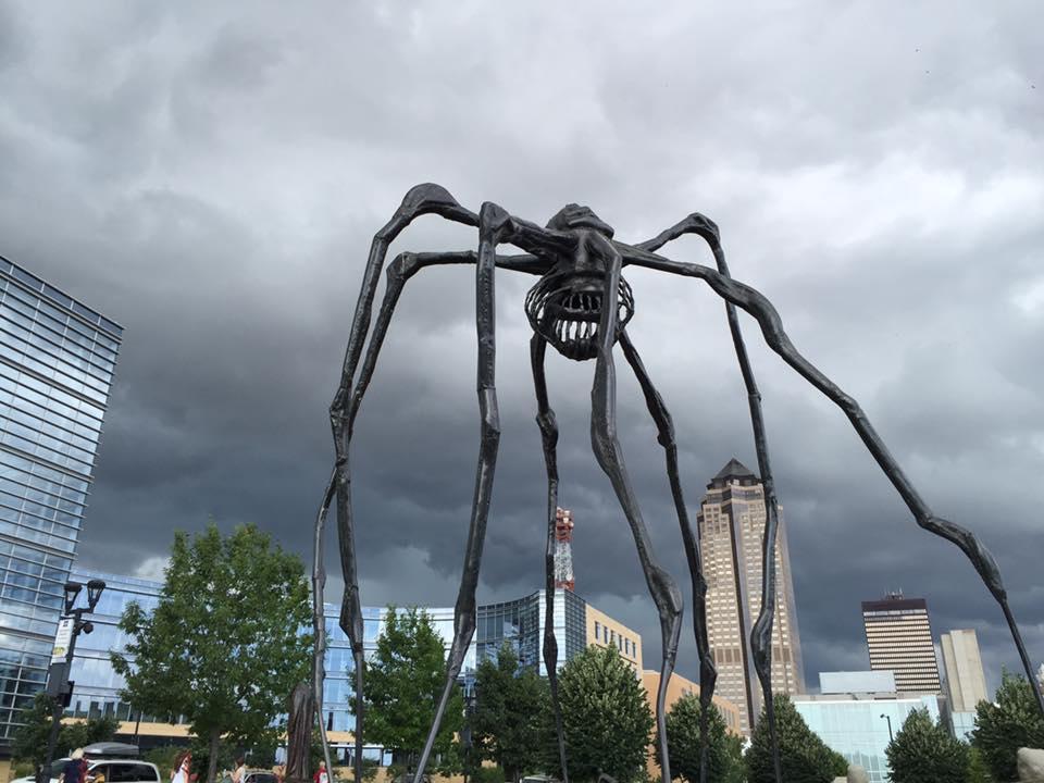 spider-dsm